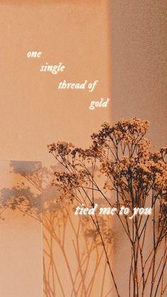 Taylor Swift Lyric Quotes, Taylor Lyrics, Taylor Swift Album, Taylor Swift Songs, Taylor Swift Pictures, Taylor Alison Swift, Aesthetic Iphone Wallpaper, Aesthetic Wallpapers, Lyrics Aesthetic