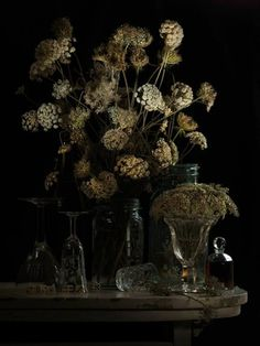 Still Life with Hemlock and Dice 2011