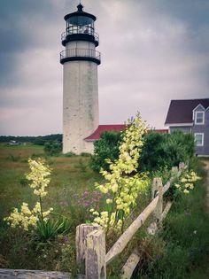 ✯ HIghland Light - Cape Cod