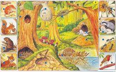 Párosító játékok Dora, Weather Seasons, Forest Theme, Animal Projects, Autumn Activities, Zoology, Animal House, Forest Animals, Creative Kids