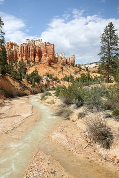 Refreshment in the desert by Sarah Krause on Flickr. Bryce Canyon National Park, Utah, USA