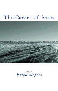 The Career of Snow by Erika Meyers