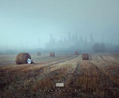 mojebory by Mariusz Warsinski on 500px