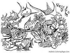 realistic flower coloring pages Bing Images furry fishy