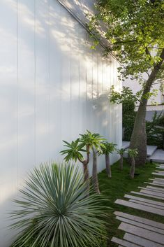 Image 32 of 62 from gallery of The Concrete Cut / Pitsou Kedem Architects. Photograph by Amit Geron Landscape Architecture, Interior Architecture, Landscape Design, Garden Design, House Design, Interior Design, Villas, Pitsou Kedem, Abandoned Houses