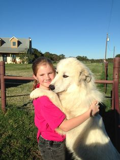 Me and my nieghboors dog Lexi she is huge