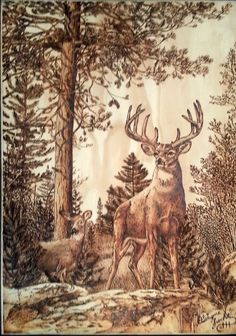 Deer in the Woods-  Wood burned picture of a deer in the woods. With these wood burnings, our Mad Pyrographer has achieved a new level of sophistication. If you keep looking you will swear you can see green in the pine trees, even if only illusory.