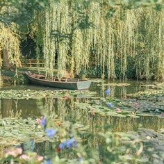 My Visit to the Real Monet's Garden in Giverny, France