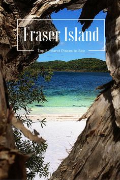 Exploring the Inland tracks of Fraser Island! Photo is of Lake Birrabeen! Click to read the post on our blog.
