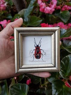 Tiny Firebug Framed Giclée Print Unique Gifts, Handmade Gifts, Bird Prints, Printing Process, Giclee Print, Watercolor Paintings, Digital Prints, Insects, Gift Ideas