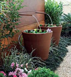 Para fontes, recomenda-se utilizar vasos de aço, cimento ou cerâmica - esta, impermeabilizada com produtos à base de resina e cimento polimérico.