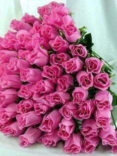 Pink roses for my love