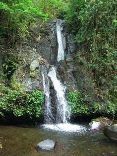 . Bali Waterfalls, Oceans, Rivers, Lakes, Creatures, Outdoor, Sweetie Belle, Naturaleza, Outdoors