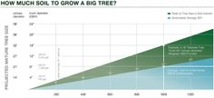 How much soil does an urban tree need?