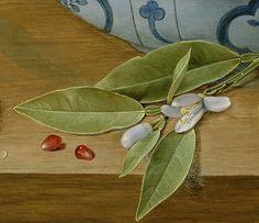 Jacob_van_Hulsdonck_(Flemish_-_Still_Life_with_Lemons,_Oranges_and_a_Pomegranate Pomegranates, 17th Century, Wine Recipes, Still Life, Dutch, Plant Leaves, Detail, Flowers, Painting