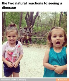So funny, but is that a real dinosaur?????