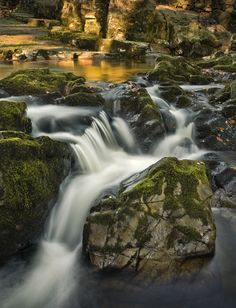 Shimna Flow by Gary McParland, via 500px; Shimna River, Tollymore Forest, County Down, Northern Ireland