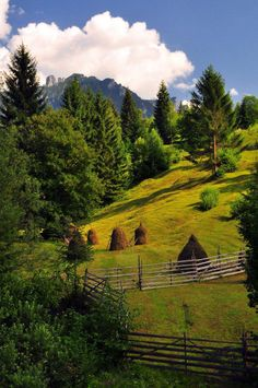 Hiking and trekking the majestic Carpathian mountains, Romania