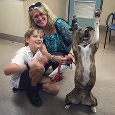 EMOCIONANTE: Foto mostra a alegria de cachorra ao ser adotada <3
