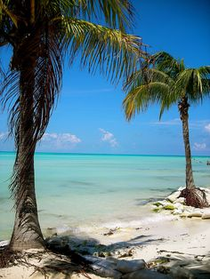 Isla Mujeres is a gorgeous island off the coast of Mexico near Cancun. It's kind of a hidden gem that not many people know about and it's beach is supposedly among the most beautiful in the world.