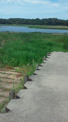 Shreve Lake