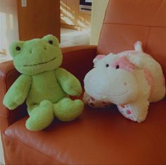 Cute Stuffed Animals, Cute Animals, Trauma, Cute Frogs, Green Frog, Frog And Toad, Cute Plush, Build A Bear, Spring Green