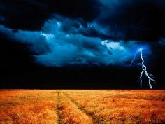 lightening in a field