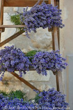 Lavender bunches on shelves for sale at market