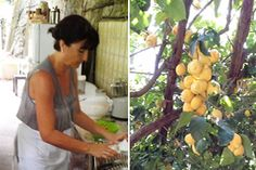 Authentic Italian Cooking Schools & Tuscany Cooking Classes