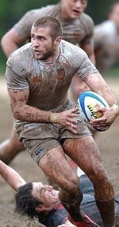 Rugby Sport, Sport Man, Rugby Rules, Hot Rugby Players, Australian Football, Soccer Guys, Ab Workout Men, Hard Men, Rugby League