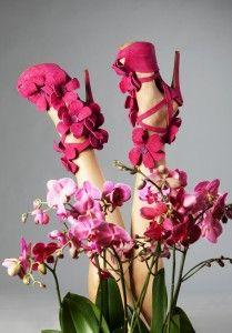 Orchid Shoe Fuchsia by Jan Jansen SS13