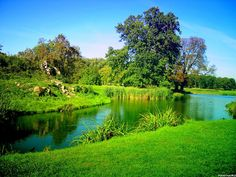 Wallpaper name: HD Green Nature Wallpapers. Description: This is a very green landscape with a neat creek.