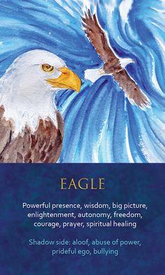 Spirit Animal Awareness Oracle Cards - Eagle Spirit Animal Totem, Animal Spirit Guides, Animal Totems, Animal Meanings, Animal Symbolism, Spiritual Animal, Spiritual Symbols, Eagle Totem, Animal Medicine