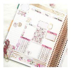 #plannergirl Instagram photos | Websta