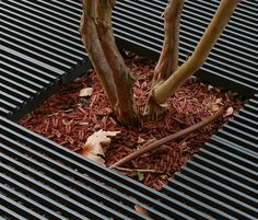 Tree guards | Urban planters | Baltimore Tree guard | AREA. Check it out on Architonic
