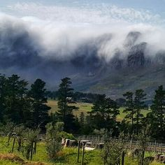 Views of the Hottentots-Holland mountain range from Wedderwill Estate - Somerset West - Cape Town Travel Pictures, Travel Photos, Sa Tourism, Somerset West, Out Of Africa, Mountain Range, Countries Of The World, Cape Town, Country Living