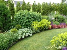 A small but large garden;) page 80 garden forum garden Privacy Landscaping, Modern Landscaping, Front Yard Landscaping, Inexpensive Landscaping, Landscaping Ideas, Arborvitae Landscaping, Landscaping Contractors, Landscaping Software, Back Gardens