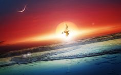 Moon Pictures Wallpaper Top Quality Cool Moon Pics NMgnCP