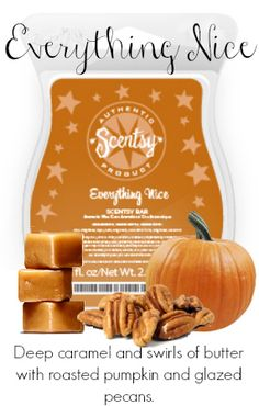 Everything Nice...order now for the holidays! http://rcanges.scentsy.us