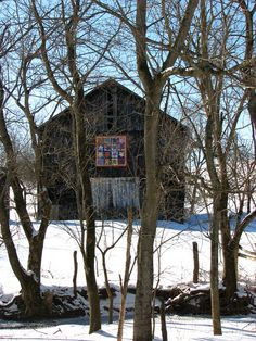 https://flic.kr/p/5Yre8a | Screened Barn Quilt | The best  view I could get of this barn from the road was behind a row of trees. . .