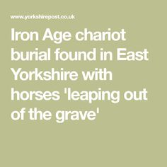 Iron Age chariot burial found in East Yorkshire with horses 'leaping out of the grave'