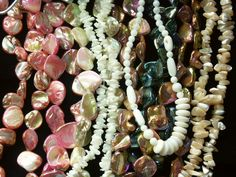 Shells and mother of pearl