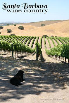 Santa Barbara, California #wine #tasting recommendations. #travel