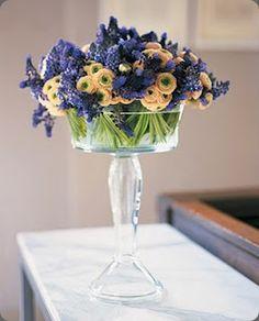 grape hyacinth and ranunculus