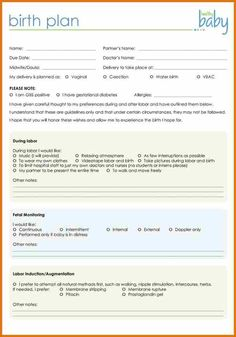 birth plan template 20 download free documents in pdf word birth plan pinterest. Black Bedroom Furniture Sets. Home Design Ideas