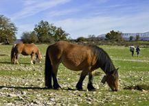 Parque Nacional de Urbasa y Andia
