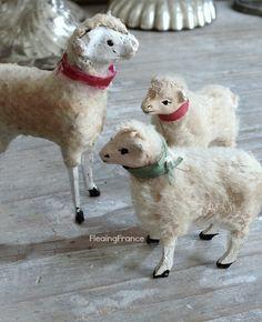 FleaingFrance…..French Christmas lambs