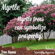 Beloved Baby Names: Tree Names Awesome Names, Cool Names, Nature Names, Myrtle Tree, Character Names, Baby Names, Neon Signs, Words, Beautiful