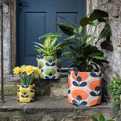 The retro flower design is back, this time with the quirky large fabric plant bag. Go the extra step when giving plants as a gift to somebody inside this Orla Kiely's charming fabric plant bag. Perfect for all of the green-fingered fanatics out there Large Plants, Potted Plants, Pruning Shrubs, Orla Kiely Bags, Plant Bags, Orange Plant, Dandelion Yellow, Arte Floral, Garden Gifts