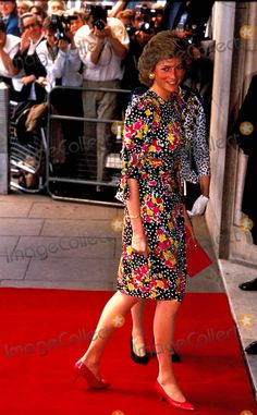 the imput of princess diana to the society [today i came out of my lurkerdom to post a comment in the previous thread after i wrote it, i realized that it might make a good stand-alone post.